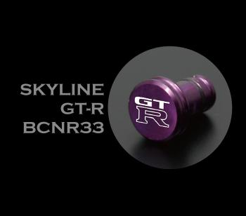SKYLINE GT-R BNR33