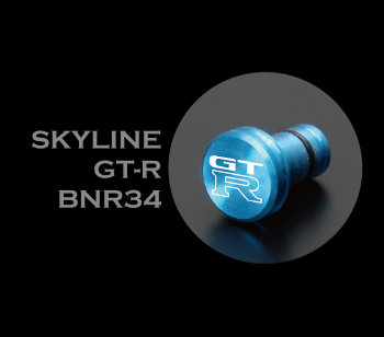SKYLINE GT-R BNR34